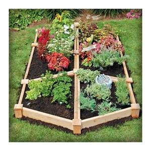 Gardens raised beds and ornamental plants on pinterest for Ornamental trees for flower beds