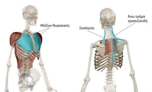Overhead θέση και Upper Crossed Syndrome