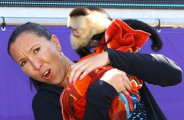 Jelena Jankovic atacata de o maimuta la Miami