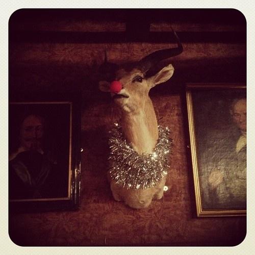 Festive Gazelle at Cosy Club, Stamford.