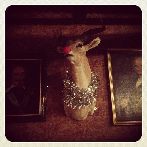 Festive Gazelle at Cosy Club, Stamford.