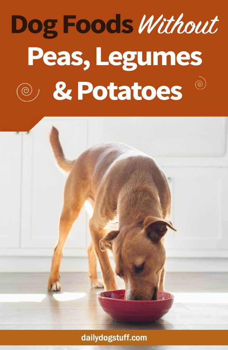 7 Best Dog Foods Without Peas Lentils Legumes Potatoes Dog