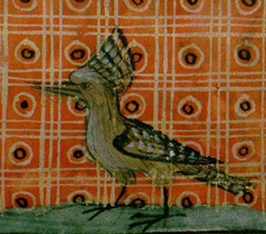 Le coq héron (La huppe)