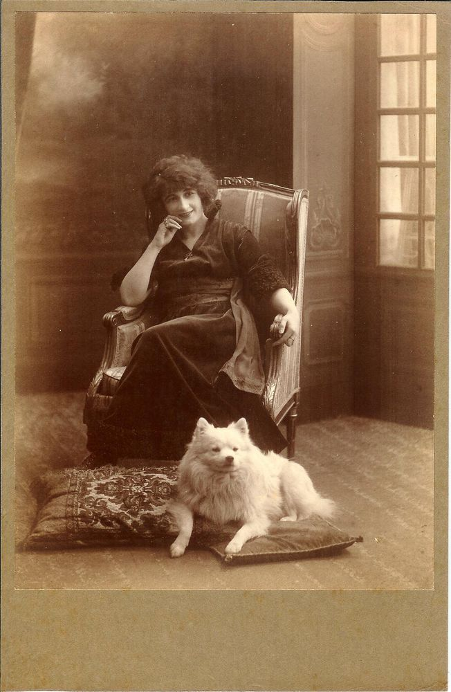 Lady in armchair n SPITZ pomeranian dog on pillow antique CABINET CARD photo