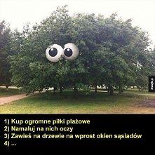 Zobacz zdjęcie :):):)