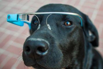 Accordo tra Google e Luxottica per l'integrazione dei sistemi eyewear con lo stile estetico dei prodotti dell'azienda italiana