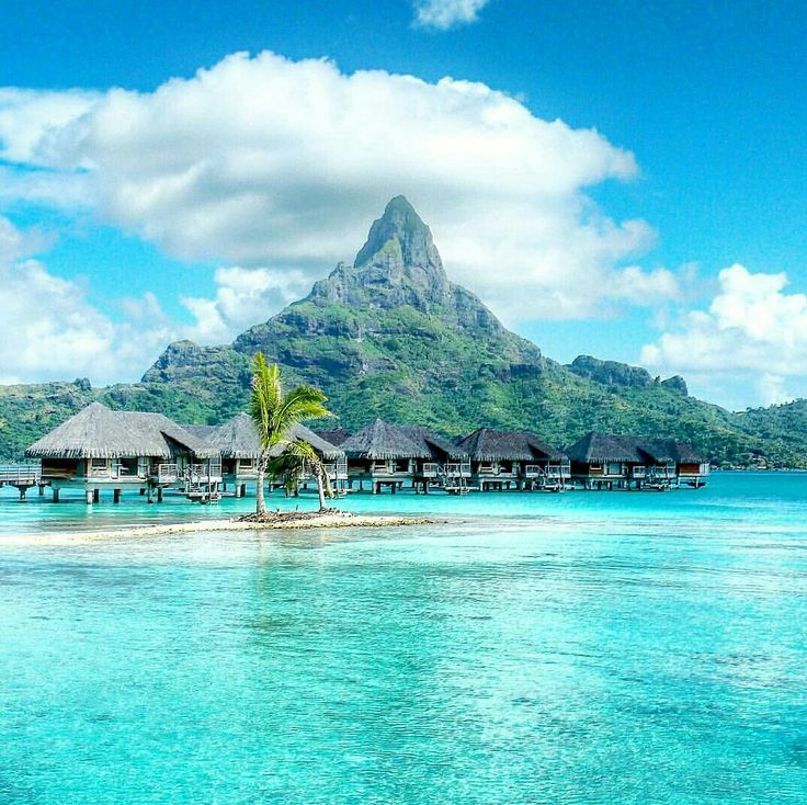 South Pacific Beaches: 321 Best Travel Images On Pinterest