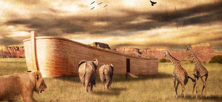 Kuran'da Nuh Kavminin Helak Olması ve Geminin İnşa Edilmesi