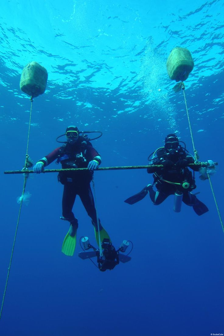 418 best scuba adventures images on pinterest diving snorkeling cyprus zenobia wreck diving site xflitez Choice Image
