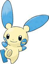 Minun Pokédex: stats, moves, evolution & locations | Pokémon Database