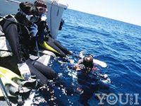 沖縄の天気・気温・水温 1月 2月 3月 4月|沖縄 那覇のダイビングはYOU AND I(ユーアンドアイ)へ 沖縄ダイビング 慶良間ダイビング