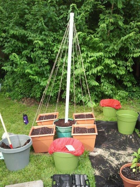 Vegetable Container Gardening Ideas vegetable container gardening ideas Find This Pin And More On Container Vegetable Gardening