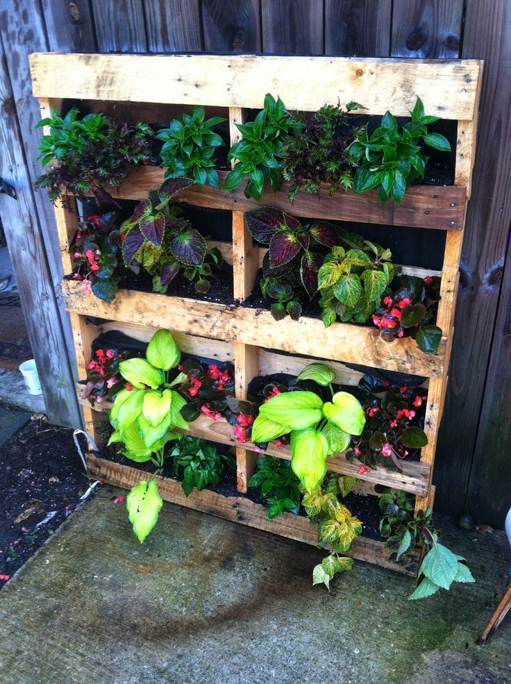 Do It Yourself Garden: 11 Best DIY Or Do It Yourself Images On Pinterest