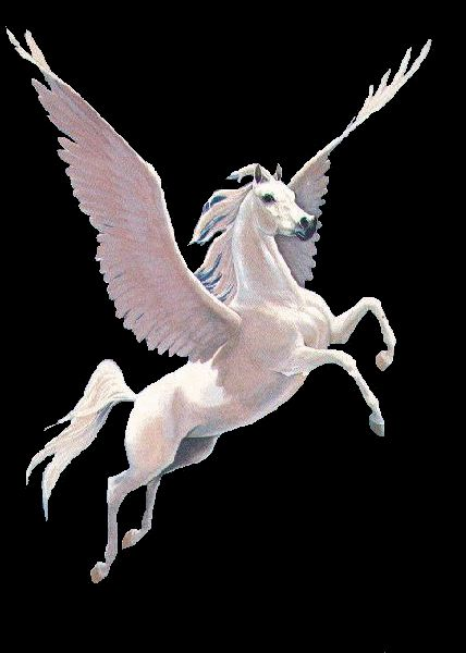Pegasus                                                       …