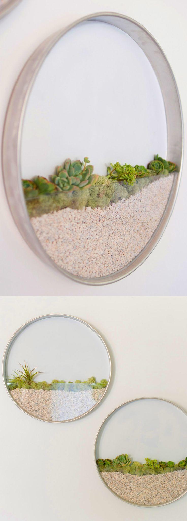 Runde, gerahmte Pflanzgefäße verleihen Ihren Wänden lebendige Kunst – #Add #Art #Circular #Fra …   – Alles