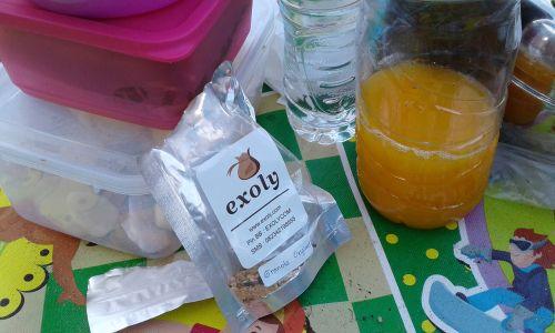 Makanan Sehat Saat Piknik