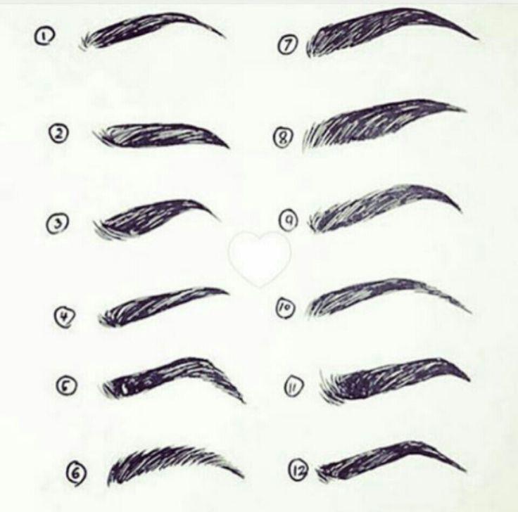 Eyebrow Sketches