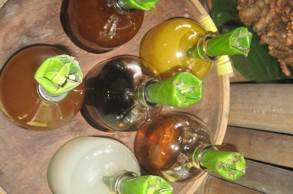 Jamu is the welcome drink offered at The Open House Bali. It is an ancient herbal medicine from natural, plants and roots.