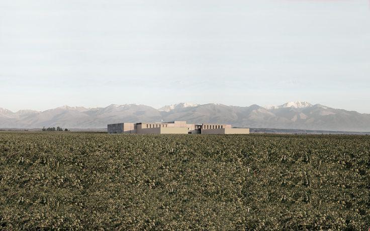 Conoce los #vinos de la bodega #Rutini #Wines (#Tupungato - #Mendoza) en nuestra Web!