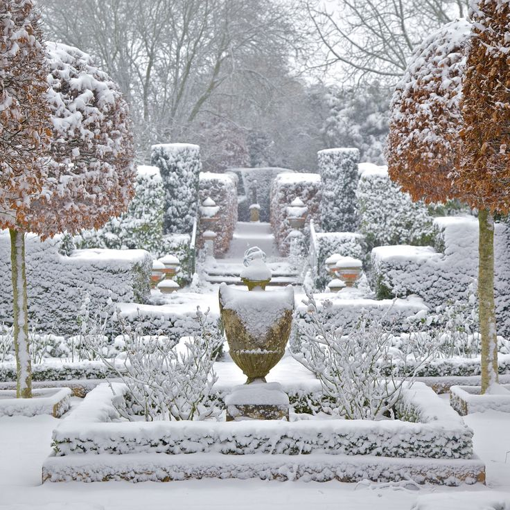 252 Best Images About Winter Gardens On Pinterest