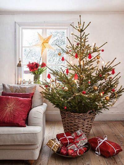 tree in a basket! love