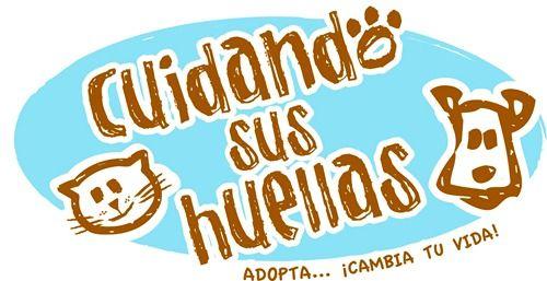 Cuidando sus Huellas organiza el Huellatón, Plaquita Fest y Registro Civil para mascotas