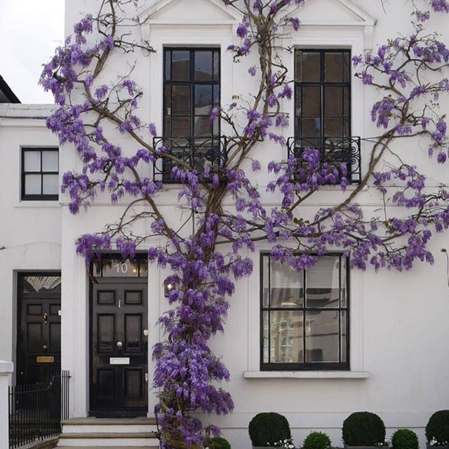 Olsen Home Exteriors: Best 25+ Stucco Exterior Ideas On Pinterest
