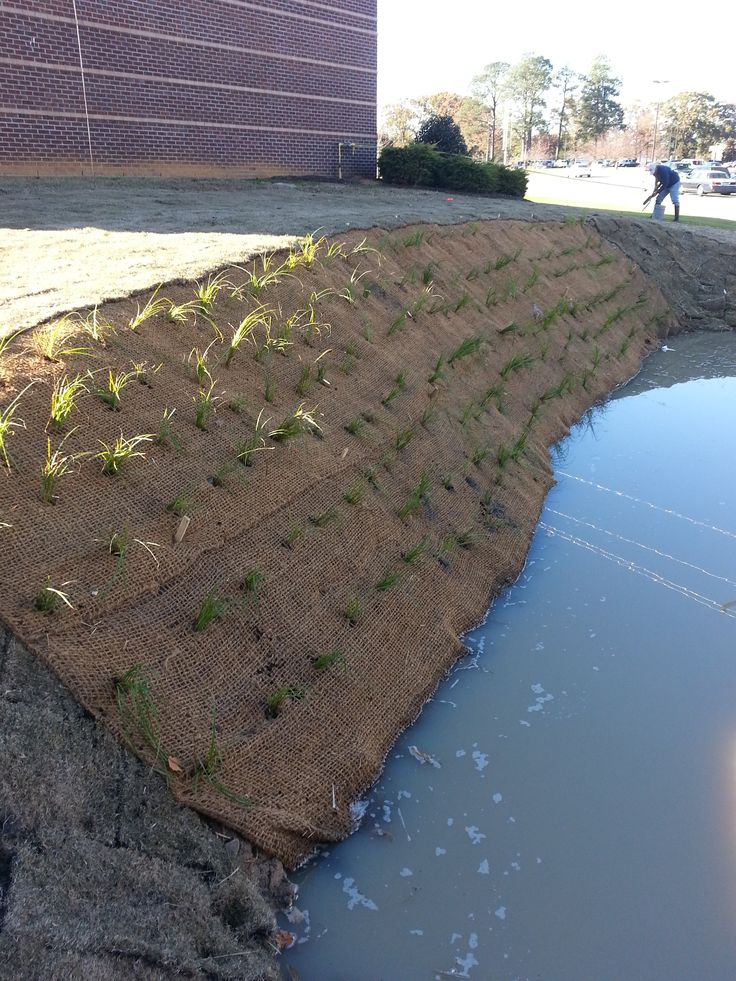 Pocket #wetland construction at Edgecombe Community College #ptrf ptrf.org