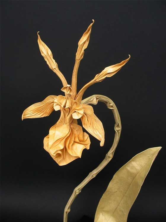 18 best origame images on pinterest paper art oragami and origami art stunning origami work by nguyen hung cuong mightylinksfo