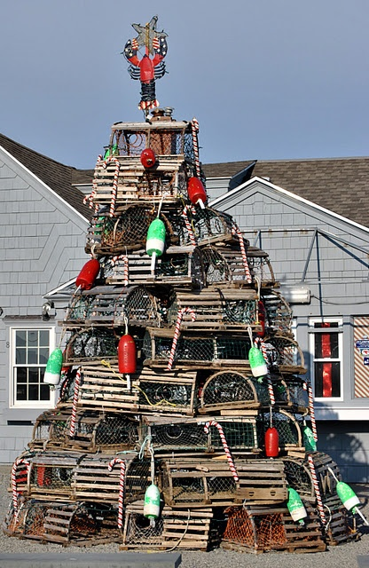Lobster trap Christmas Tree: Holiday, Trap Christmas, Christmas Tree Lobster, Lobsters, Christmas Tree A, Christmas Tree Clever, Christmas Tree Beach, Christmas Trees