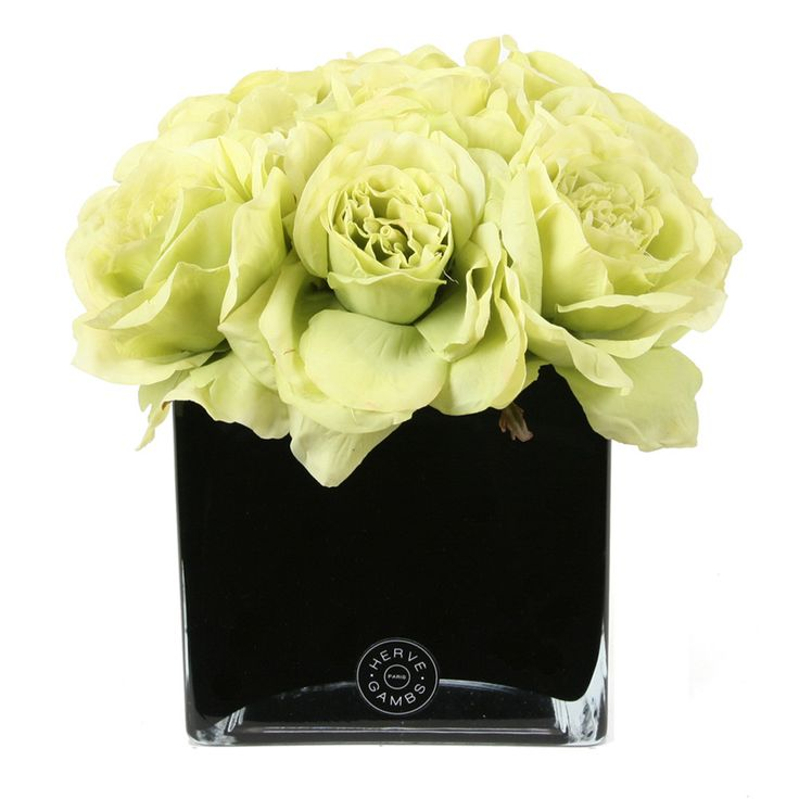 Herve Gambs - Green Couture Rose & Large Black Glass Cube