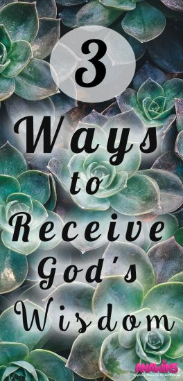 Wanting wisdom in your life but don't know how to get it? Here you'll find the 3 ways that you can receive God's wisdom.