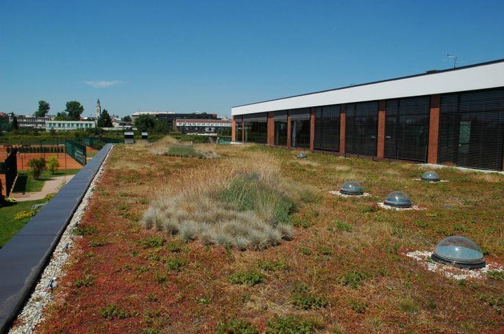 Přírodí zahrady - střešní zahrady a zelené střechy