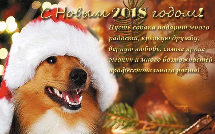 Собачьи поздравления с новым годом