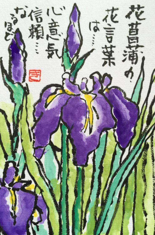 "Language of flowers of iris is ""spirit"", ""trust"". Indeed"