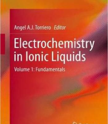 Electrochemistry In Ionic Liquids: Volume 1: Fundamentals PDF