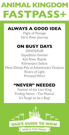 Get the most out of your day at Animal Kingdom with Dad's Cheatsheet!
