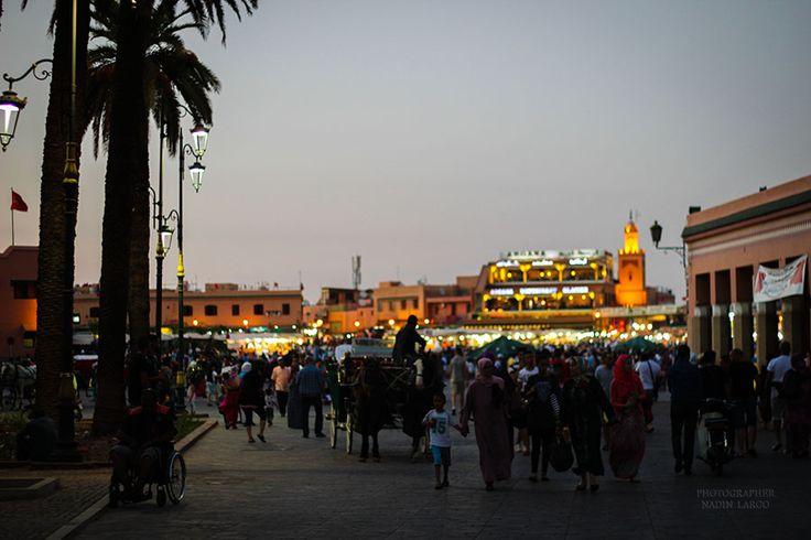 #Марокко — страна потрясающих контрастов: песчаные холмы пустыни Сахары и заснеженные горы, золотые пляжи и лазурные воды Средиземного моря, серебристые водопа