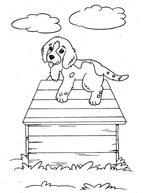 Dog Kennel 34 Buildings And Architecture Printable Coloring Pages