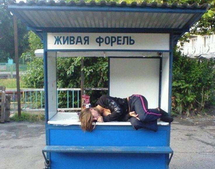 устала форель