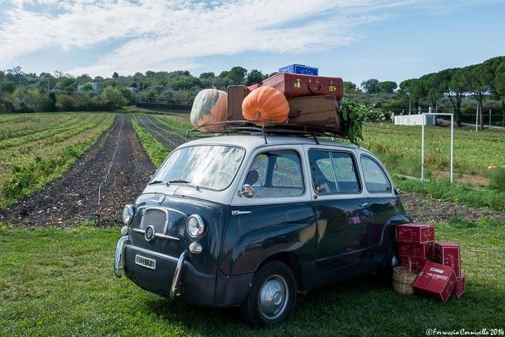 antica e moderna usanza: viaggiare portando i prodotti del proprio territorio da donare e far assaggiare