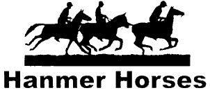 Hanmer Horses Treks - Hamner Springs Horse Riding   Cantrbury   New Zealand.