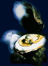 Smykke med perle