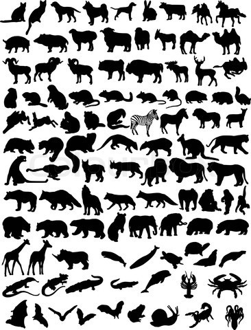 Animal silhouettes                                                       …