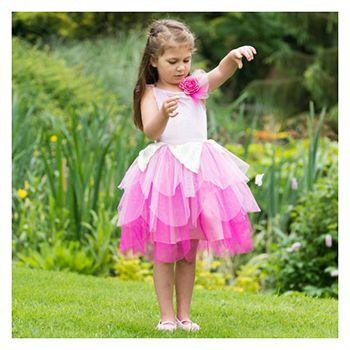 Αποκριάτικη Στολή «Rose Petal Fairy»