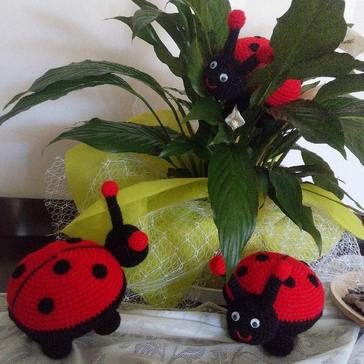 Musmutlu bir hafta sonu olsun arkadaşlarım  benim çiçeğime uğur böcekleri geldi sizlerede göndereyim biraz  #amigurumi #amigurumidoll #oyuncak #arkadaş #crochetlove #crochet #örgü #handmadewithlove #elişi #uğur #uğurböceği #siparişalınır #organik #oyuncak #arkadaş by organikoyuncak.serap
