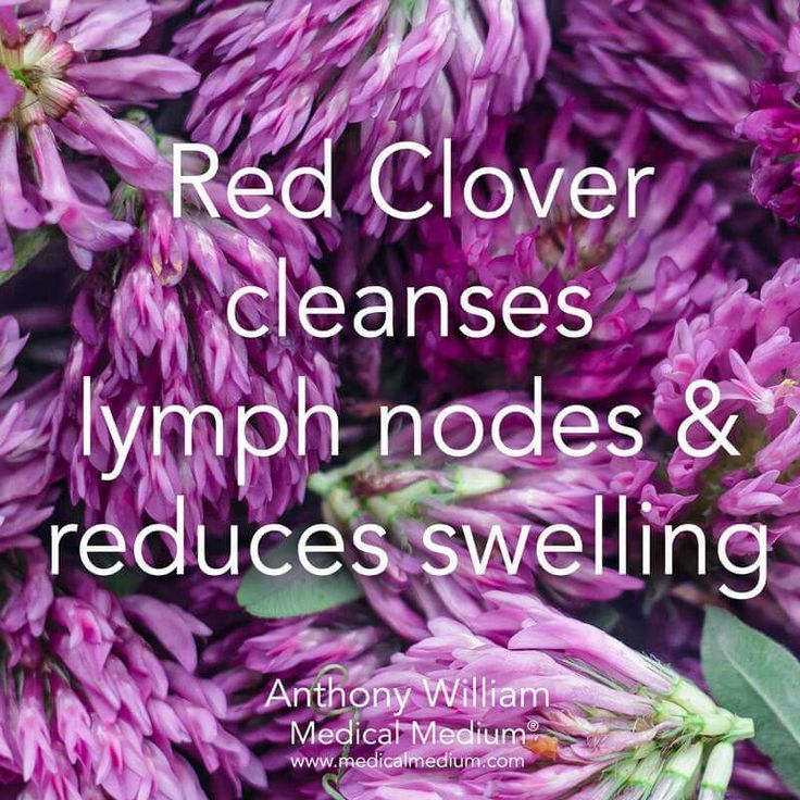Red clover cleanses lymph nodes and reduces swelling