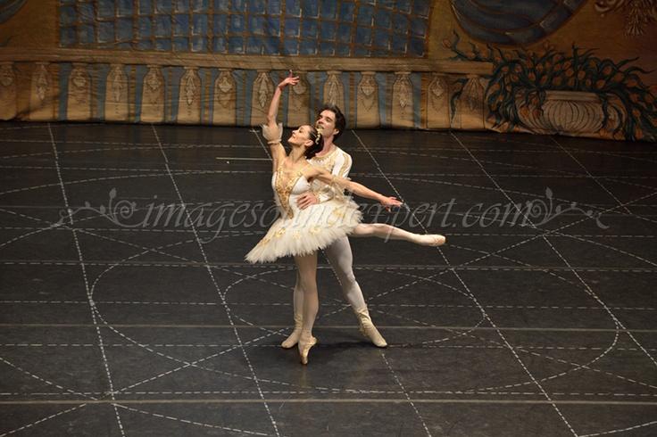 Ballet Photos - The Nutcracker
