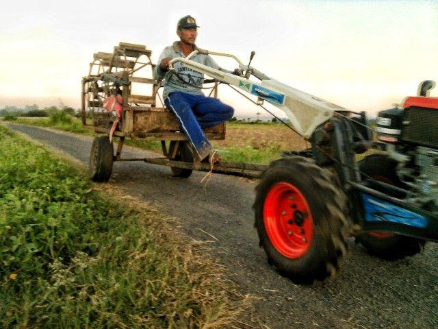 Insinyur pertanian