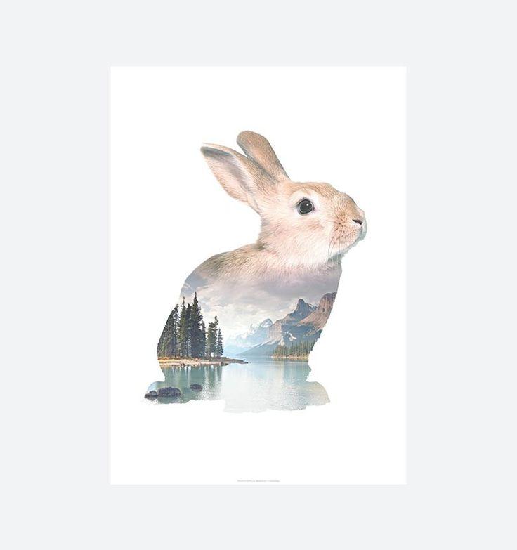 """RABBIT - Faunascapes - Plakaten """"Rabbit"""" fås i størrelserne A3 og 50x70 cm. Plakaten med motiv af en kanin er en del af serien Faunascapes designet af WhatWeDo. Serien består af diverse dyremotiver, landskaber og vise ord og har alle et nordisk udtryk både i motiv og farvevalg. Motiverne er """"gennemsigtige"""" så den smukke natur får lov at skinne igennem."""
